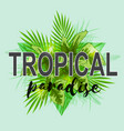 background with green palm leaves vector image vector image