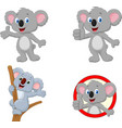 cartoon happy koala collection set vector image vector image