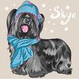 Cartoon hipster cute dog Skye Terrier