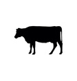 cows silhouettes vector image vector image