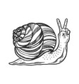 fantastic snail hand animal engraving vector image vector image