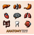 Internal human organs handdrawn icons set with - vector image vector image