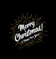 merry christmas and happy new year with sunbursts vector image vector image