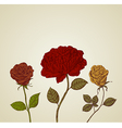 Abstract background beautiful retro roses vector image