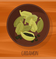 cardamon flat design icon vector image vector image