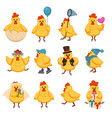cartoon chicken funny cute characters for kid vector image vector image