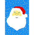 Face of Santa Claus vector image vector image