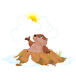 Groundhog vector image