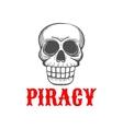 sketched skull dead pirate vector image