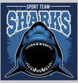 strong shark sports mascot vector image vector image