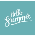 Hello Summer lettering tpography design template vector image