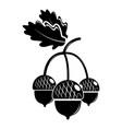 acorn icon simple black style vector image vector image