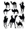 Camels vector | Price: 1 Credit (USD $1)