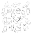 Cute cats Hand drawn collection vector image