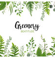floral greenery card design with green leaves vector image vector image