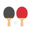 two ping pong rackets vector image
