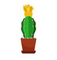 cactus with yellow flower vector image