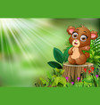 cartoon of baby bear sitting on tree stump with gr vector image vector image
