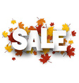 Sale background with maple leaves vector image vector image