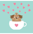 Shih Tzu dog sitting in white cup with heart Cute vector image vector image