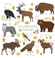 Yellowstone National Park animals set grizzly vector image vector image