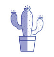 silhouette cactus plant with flower inside of vector image