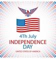 America Eagle American eagle background vector image