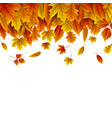 autumn leaves falling white background vector image