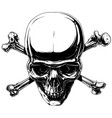 graphic horror human skull with crossed bones vector image vector image