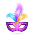 Violet carnival mask with feathers vector image vector image