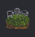 beer emblem hand drawn label glass drink vector image