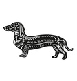 Ethnic ornamented dog vector image vector image
