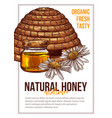 natural bee honey hand drawn poster template vector image vector image
