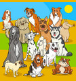 pedigree dogs cartoon characters group vector image