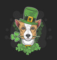 st patricks dog day vector image vector image