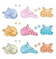 Sleeping cats vector image
