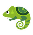 iguana funny alphabet animal vector image vector image