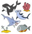 Marine predatory fish vector image vector image