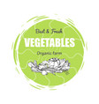 best and fresh vegetables vector image vector image