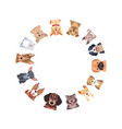 circle of different purebred dogs vector image