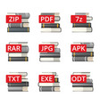 extension file icons vector image