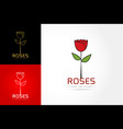 rose logo template vector image vector image