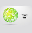 silhouette of a tennis ball from particles vector image
