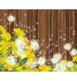 spring flowers wood vector image vector image
