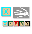 x is for x ray vector image vector image
