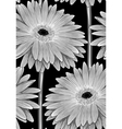 black and white seamless background with gerbera vector image vector image