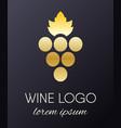 grapes logo design element vector image