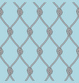 marine rope fishnet with knots seamless vector image vector image