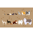 cartoon dogs of different breeds vector image vector image