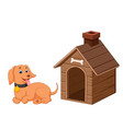 dog and pet dog house vector image